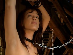 Chained Up For An Inspection