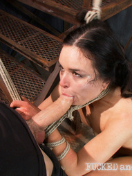 Fucked Hard and Put up Wet