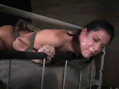 AVN winning MILF in slavery