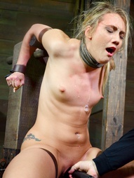 AJ Applegate is the perfect package. Blonde, toned and very very good at sucking dick. Just how we..