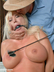 Summer Brielle is a lonely housewife who lives out her BDSM fantasy with the sadistic postman in a..