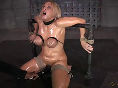 Blowjobs In Brutal Breast Bondage
