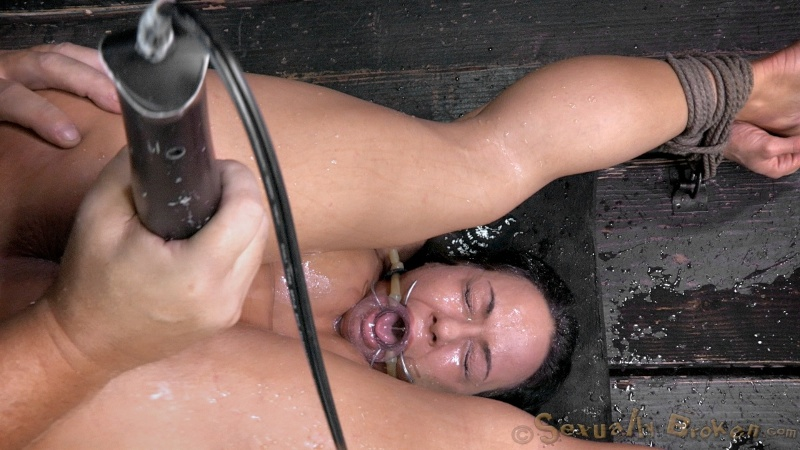 katie coxx naked pictures on brand new faces for shemp tgp
